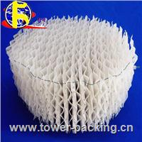 Plastic structured packing NK-PSP