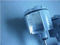 防爆熱電阻 雙支防爆熱電阻WZP2-440PT100