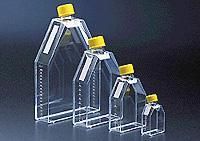75cm正方斜口細胞培養瓶  orj-1648