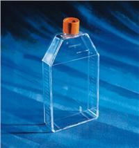 25cm細胞培養瓶430168,現貨 430168