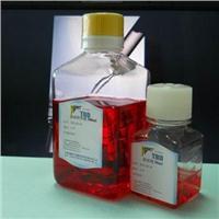 TBD哺乳動物角質細胞液體完全培養基 JZ2003
