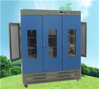 人工气候箱 二氧化碳人工气候箱 RQH系列
