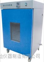 隔水式恒温培养箱 XZ-6