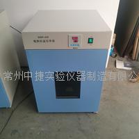 電熱恒溫培養箱 DHP-420
