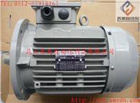 意大利ELECTRO ADDA電機、ADDA馬達、ADDA電機、EA電機、EA馬達 意大利ELECTRO ADDA電機、ADDA  MOTOR、ADDA電機、EA電機、EA馬達