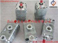 日本SHIMADZU島津齒輪泵,YPD1-2.5-2.5A2D2-L齒輪泵、YPD1油泵 日本SHIMADZU島津YPD1-2.5-2.5A2D2-L齒輪泵、YPD1油泵