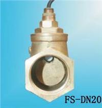 FS-DN20水流开关 FS-DN20