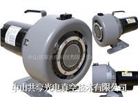 Agilent Varian涡旋式干泵TriScroll 300  Varian TriScroll 300