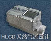 HLGD天然氣流量計 HLGD32-80