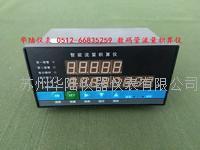 數碼管流量積算儀 HLLK80