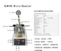 100ml 微型反 应釜