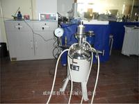 250ML  聚合反应釜