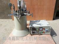 加氢反应釜 GSHA-2L