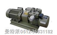 好利旺KRX 1-P真空泵维修 ORION KRX 1-P
