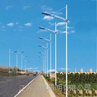 太阳能风能路灯