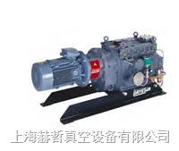 Edwards真空泵 工業幹泵 GV250 爪式真空泵 愛德華工業幹泵 幹式真空泵