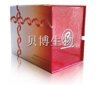 Propidium Iodide染色试剂盒  BB-4136-100T   BestBio贝博生物    BB-4136-100T