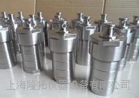 LTG-10高压消解罐,F4高压消解罐 LTG-10