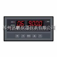 迅鹏WPL-D2温度亚洲在线仪  WPL