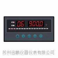 16通道亚洲在线仪|迅鹏WPL16-A WPL16