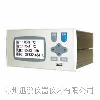 流量积算控制仪(迅鹏)WPR22FC-IK WPR22FC