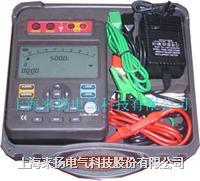 绝缘电阻测试仪 LYZT