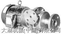 CORCORAN塑料废物处理循环泵 3000 D-HD1 (AA05)