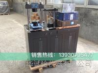 水泥抗折抗压试验机DYE-300型