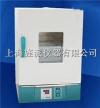 電熱恒溫幹燥箱