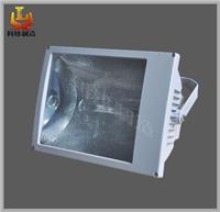 SBF6220 防水防尘防腐泛光灯 SBF6220