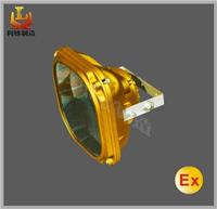 SBD1130-YQL 免维护节能乐虎国际APP泛光灯 SBD1130-YQL