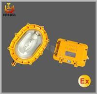 BFE8120_内场强光乐虎国际APP应急灯 LX-BFE8120