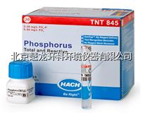 TNT845總磷和活性磷試劑