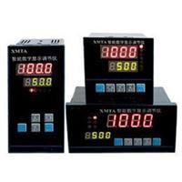 XTMA-1002 智能數字顯示調節儀 XTMA-1002