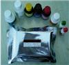 人XC趋化因子受体1(XCR1)ELISA檢測試劑盒說明書