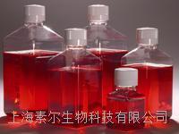 GIBCO DMEM 高糖 诚招代理 C12430500BT