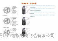 广州船用电缆 CEFR