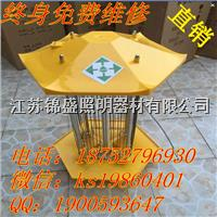 江蘇錦盛太陽能驅蟲燈