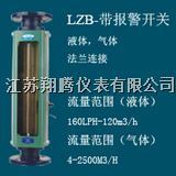 带报警开关玻璃转子流量计 XT-LZB-B