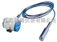 高温型投入式液位计 XT-DBS