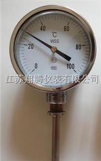 指针式温度计 WSS