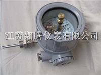 防爆电接点双金属温度计 WSSX-B