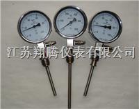 远传双金属温度计 WTYY-1021