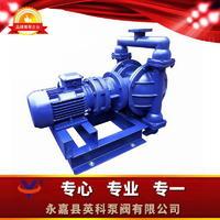 鋁合金電動隔膜泵 DBY-GY
