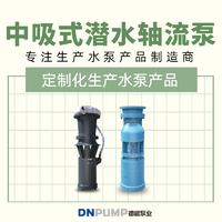 中吸潛水軸流泵生產廠家