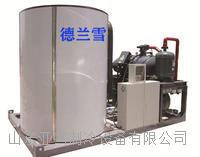 德兰雪30吨大产量片冰机