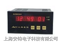 AEM260A智能流量积算仪 AEM260A