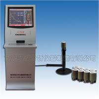 LC-TS6型爐前鐵液質量管理儀