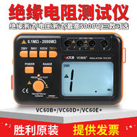 VC60B//+防雷绝缘电阻测试仪,防雷检测设备,防雷检测设备清单 VC60B//+