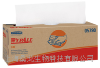 WypAll® L40 Cleaning Wipes  WypAll®L40清洁湿巾